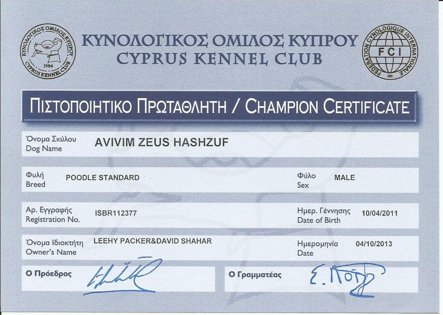 Avivim Zeus Hashazuf