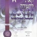 Israeli Grand Champion